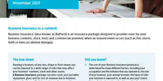Link to Business Insurance Factsheet